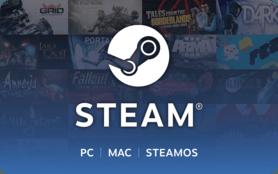 10 GBP Steam Wallet UK